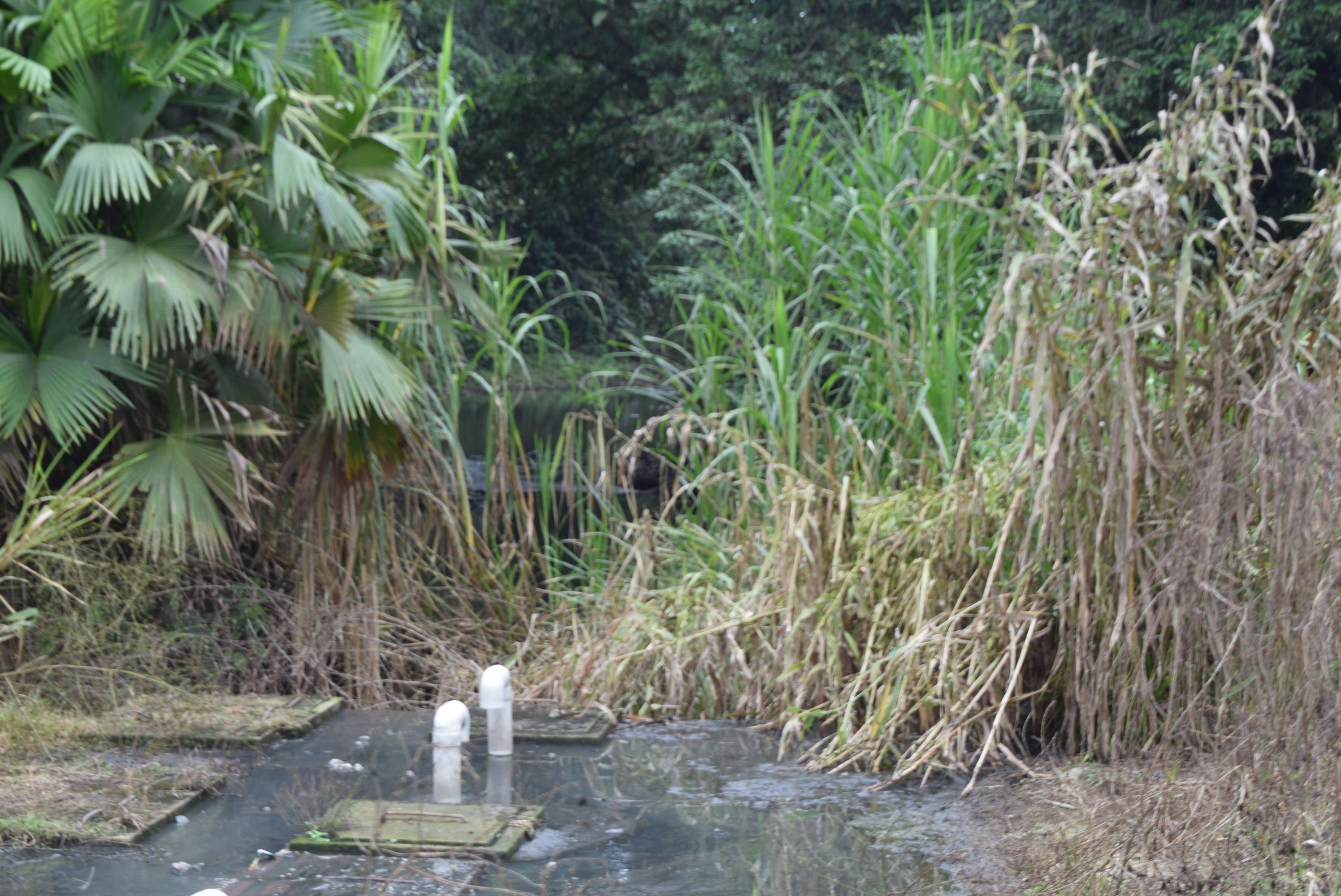 Photo of Contaminación en río Peripa se da por piscinas de oxidación