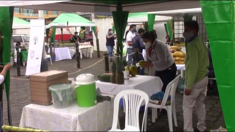 Photo of Desarrollo Económico promueve actividades en El Colono
