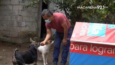 Photo of Partido político construye casa para perros con propaganda electoral