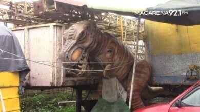 Photo of Circos se deterioran y piden trabajar para recuperarse económicamente