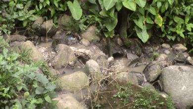 Photo of Planta de tratamiento de aguas servidas no funciona desde hace 20 años