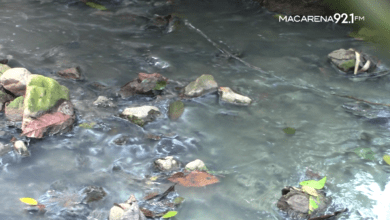 Photo of Río Mile contaminado por aguas residuales urbanas